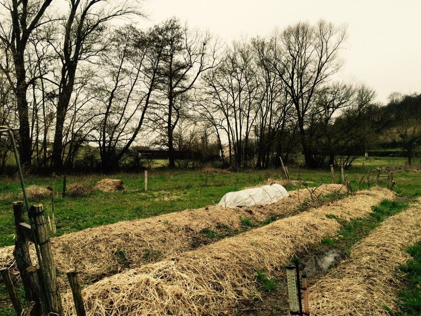 jardin maraicher Latapie fevrier 2015