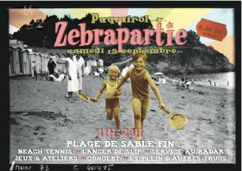 Carte postale Zebra-Eco recto