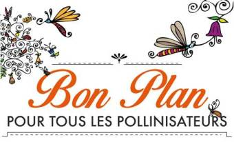 fly bon plan pollinisateurs